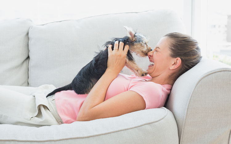 51 Wonderful Things Your Amazing Dog Teaches You!